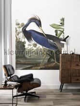 Blue crane photomural Kek Amsterdam world maps
