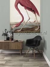 Flamingo fottobehaang Kek Amsterdam _intrieur