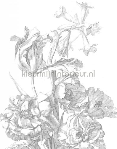 engraved flowers fototapeten pa-015 Blumen - Pflanzen Kek Amsterdam
