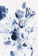 Royal blue flowers fototapeten Kek Amsterdam alle bilder