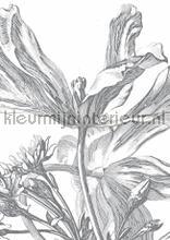 engraved flowers photomural Kek Amsterdam Flora en Fauna wp-329