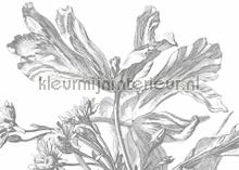 engraved flowers photomural Kek Amsterdam Flora en Fauna wp-337