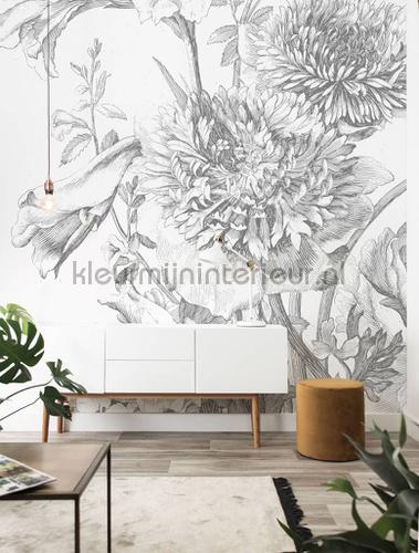 engraved flowers fototapeten wp-338 Blumen - Pflanzen Kek Amsterdam