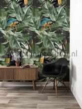 Botanical birds fottobehaang Kek Amsterdam _intrieur