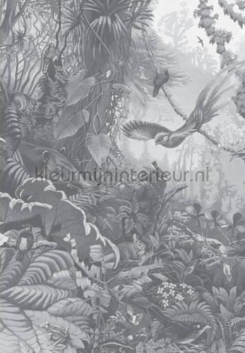 tropical landscapes papier murales wp-603 Forêts Kek Amsterdam