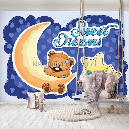 Sweet dreams fotomurales 12803ve-l Girls Kleurmijninterieur