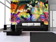 Colorful butterflies fotomurales 175-VE M Girls Kleurmijninterieur
