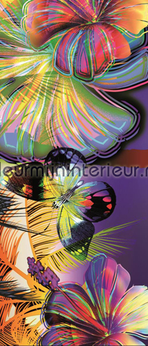 Colorful butterflies fotomurales 175-VE T Girls Kleurmijninterieur