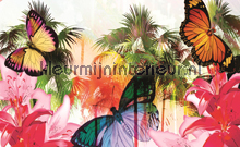 Colorful butterflies fotobehang Kleurmijninterieur Modern---Abstract