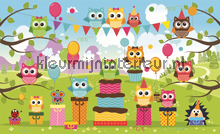 Fun owl photomural Kleurmijninterieur Girls