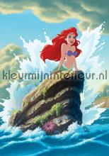 Little mermaid Ariel among the waves fotobehang Kleurmijninterieur Disney---Pixar