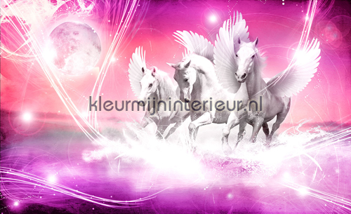 Pink running pegasus fotomurales 589-P8 oferta Kleurmijninterieur