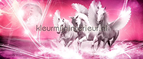 Pink running pegasus fotomurales 589-VE P Girls Kleurmijninterieur