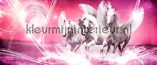 Pink running pegasus photomural Kleurmijninterieur all-images