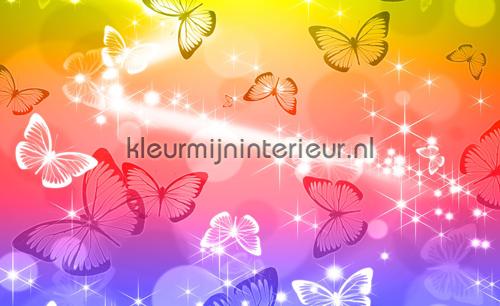 Rainbow butterflies fotomurales 402-VE M Girls Kleurmijninterieur
