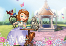 Sofia the first fototapet Kleurmijninterieur All-images