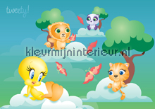 Tweety bird fototapet Kleurmijninterieur All-images