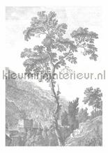 Engraved Landscapes photomural Kek Amsterdam Golden Age Flowers WP-312