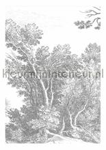 Engraved Landscapes photomural Kek Amsterdam Golden Age Flowers WP-316