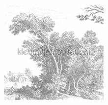 Engraved Landscapes photomural Kek Amsterdam Golden Age Flowers WP-321