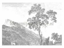 Engraved Landscapes photomural Kek Amsterdam Golden Age Flowers WP-322