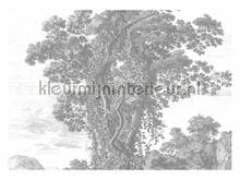 Engraved Landscapes photomural Kek Amsterdam Golden Age Flowers WP-323