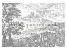 Engraved Landscapes photomural Kek Amsterdam Golden Age Flowers WP-325