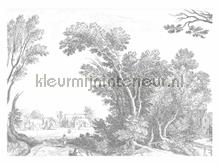 Engraved Landscapes photomural Kek Amsterdam Golden Age Flowers WP-326