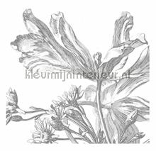 Engraved Flowers photomural Kek Amsterdam Golden Age Flowers WP-333