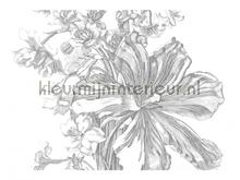 Engraved Flowers photomural Kek Amsterdam Golden Age Flowers WP-336