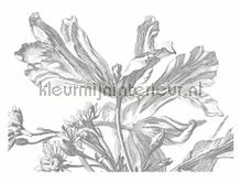 Engraved Flowers photomural Kek Amsterdam Golden Age Flowers WP-337