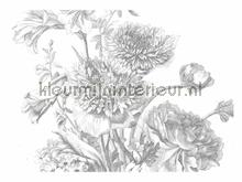 Engraved Flowers photomural Kek Amsterdam Golden Age Flowers WP-338