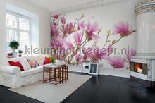 Magnolia fotobehang Rebel Walls Bloemen Planten