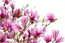 Magnolia photomural Rebel Walls Greenhouse r10591