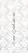 Coquilles blanches fotobehang Komar Grafisch Abstract