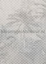 Veil photomural Komar world maps