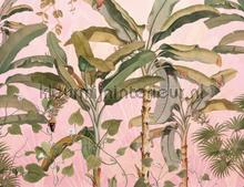 Plantation fotobehang Komar York Wallcoverings