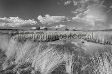 Veluwe fotobehang Noordwand Holland 0693