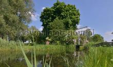 Naardermeer bruggetje photomural Noordwand Holland 0937