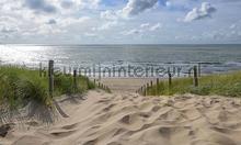 Strandopgang Noordzee photomural Noordwand Holland 1508