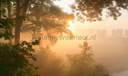 Doorwerth ochtendlicht photomural 4646 Holland Noordwand
