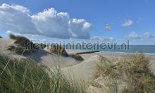Burgh Haamstede duinen photomural Noordwand Holland 5483