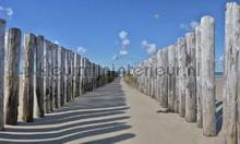 Strandpalen 2 photomural Noordwand Holland 5533