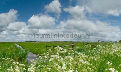 Nijkerk Arkenheem photomural 6516 Holland Noordwand