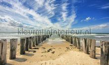 Zeeland golfbrekers photomural Noordwand Holland 7504