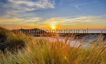 Scheveningen zonsondergang photomural Noordwand Holland 8305
