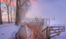 Winterochtend 2 fotobehang Noordwand Holland 9890