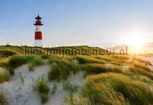 Lighthouse fotobehang Ideal Decor Zon Zee Strand