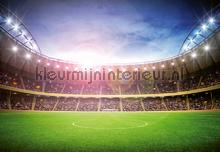 Stadium at night photomural Ideal Decor Ideal-Decor Poster 00167