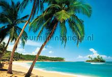 ile tropicale fotobehang Ideal Decor Ideal-Decor Poster 241